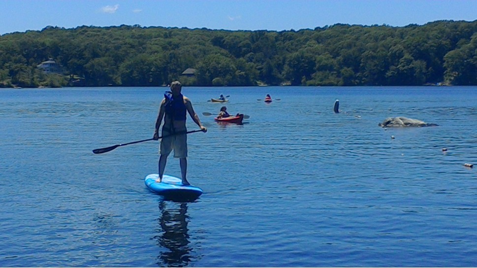Terry PaddleBoard